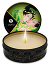 Shunga - Massage-Kerze Zenitude 30ml - Exotischer Grüner Tee