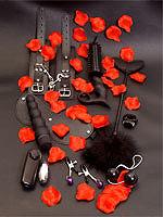 Lovetoy Starter Kit
