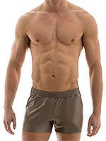 Modus Vivendi - Elegant Shorts - Dust Braun